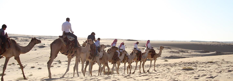 سفاري بقيق … تراث الصحراء